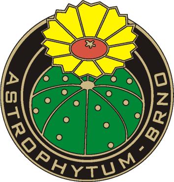 astrophytum_brno